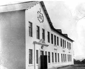 Новобобовичская школа 1954г.